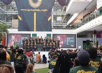 multichoice city - springboks announcement